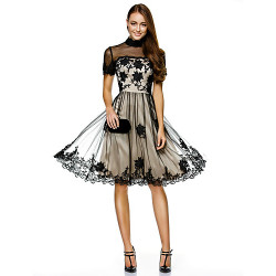 Cocktail Party / Compagnia Party Dress-Champagne A-Line Tulle al ginocchio con collo alto